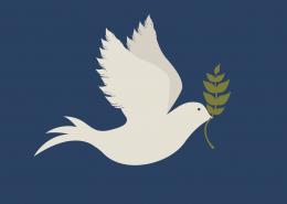 Dove-peace